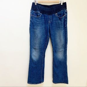 GAP sexy boot maternity stretchy jeans sz 14